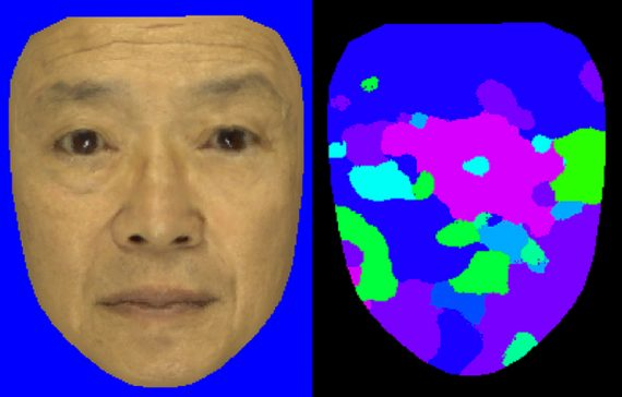 Face Texture Synthesis from Multiple Images via Sparse and Dense Correspondence